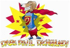 DAREDEVIL Dachshund Picture