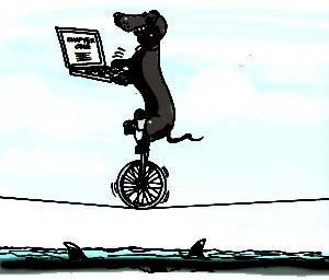Daredevil Writer