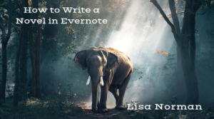 How to Write a Novel in Evernote