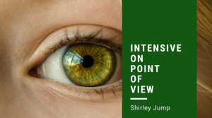 Intensive on Point of View with Shirley Jump