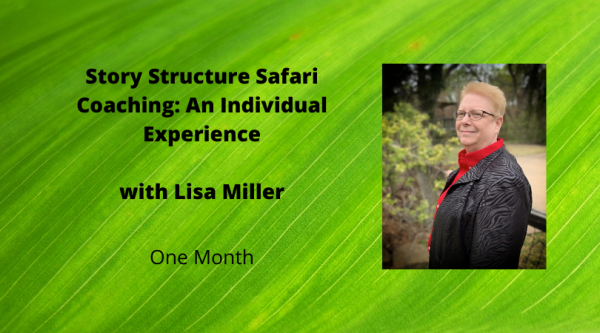 Story Structure Safari Individual coaching with Lisa Miller